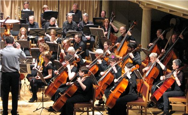 Cello Section 1